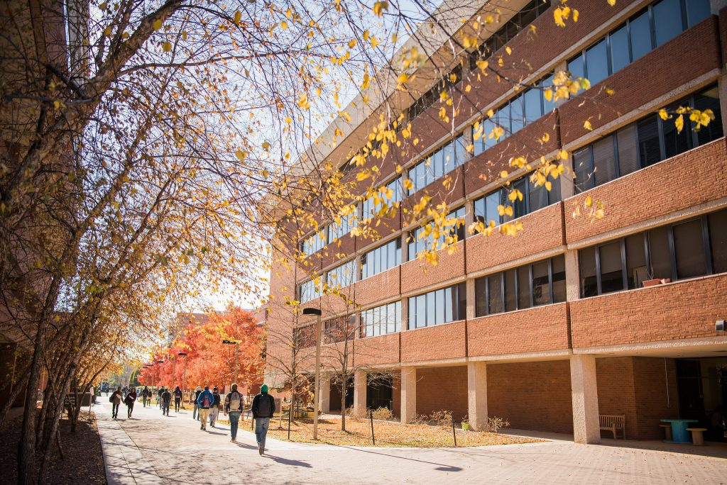 Students walking between campus buildings and autumn foliage