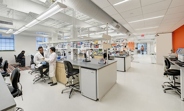 Wide angle view of a sleek lab with workers collaborating